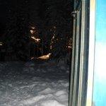 Bilde fra 3861052