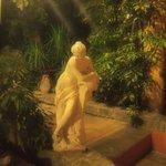 Фото в саду