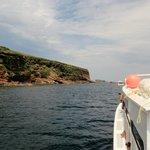 approaching bird islands
