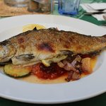 The baked trout with grilled vegetables
