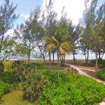 50 yard walk to beach