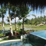View of pool and countryside from thatched sala