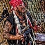 Maniac Mike Macaw...one of the crusty pirates.