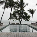 Pool / Ocean