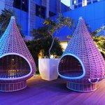 The Dedon cones