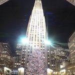 ここのクリスマスツリーが素敵です。