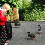 Friendly ducks too.
