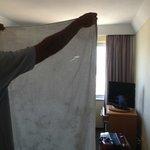 toalha rasgada e suja