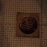 drain in a bathroom