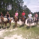 Western Pleasure Riding Stables & Carriages