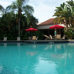 Relax at our Tropical Pool