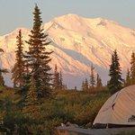 Morning view of Denali from Wonder Lake CG