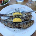 grilled Cornish sardines