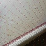 stained wallpaper
