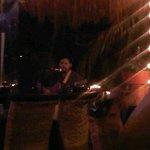 Our nightly serenade by  Salvador Formento