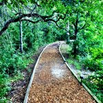 Messina Hof - Trail