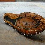 Un zapato en construcción