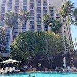 Island Hotel Newport Beach pool