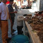 A visit to the Capo Market with Vincenzo