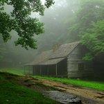 Ogle's cottage