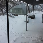Snow right outside the front door - perfect for kids to play safely!
