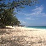 sivananda bahamas
