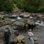 Superb Fly Fishing