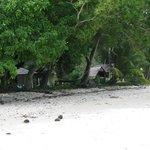 Fares from beach