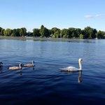 Озеро Zeuthen. Вид от отеля