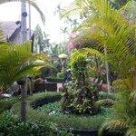 garden inlet