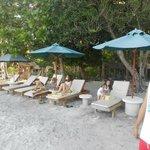 chairs near the beach