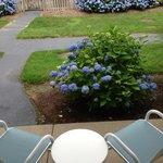 courtyard patio room