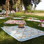 Gorgeous Picnic Setting