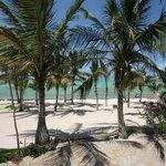 Spiaggia Jacaranda
