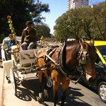 Dario y Dorys in carriage trip Santelmo