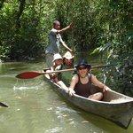 Esteros y manglares