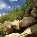 Kids loved climbing the boulders!