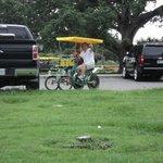 City Park Bike rentals
