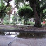 City Park Sculptural Garden