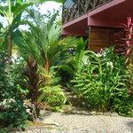 Coconut Love Beach House Foto