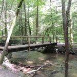 Cascade falls trail