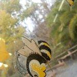 Cute honey bee window art :]
