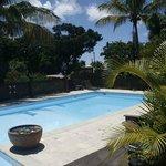piscine des bananes vertes