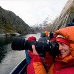Winter Lofoten Nature Safari