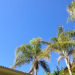 Blue Skies - Poolside