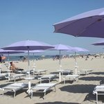 Sandy beach of nearby Senigallia