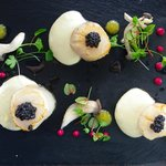 Sea Scallops topped with caviar (under $20)