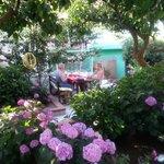 Üppiger Garten