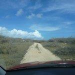 road through dunes