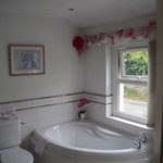 Rose Bathroom, also has big shower